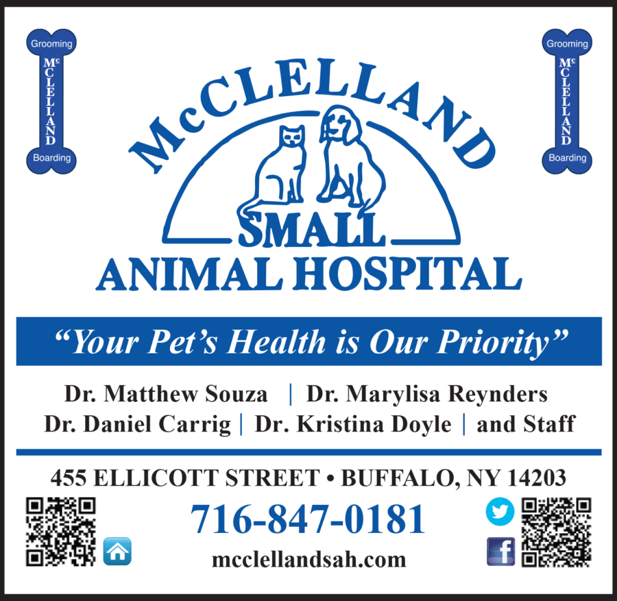 McClellandSmallAnimalHospitalAd_Proof
