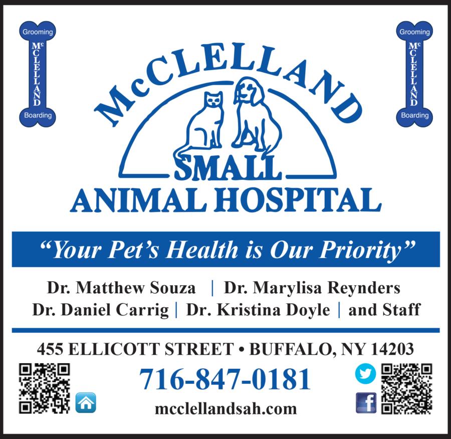 McClellandSmallAnimalHospitalAd_Proof